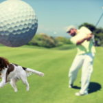Golf player and dog in golf course
